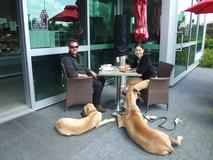 HY+Flip+Danes-cafe
